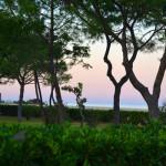 Crépuscule sur la méditerranée, vu de l'hôtel (Argelès)